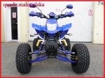 ATV model BASHAN BS250S-11B NIEBIESKI
