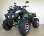 ATV model BERETTA MK300X 250 cc  Manual moro